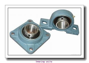 INA RAY60 bearing units